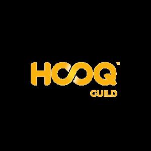 HSQ-01